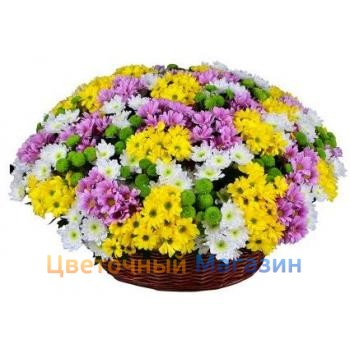 "Basket ""Rainbow chrysanthemum"""